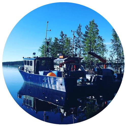 Kalaveneet Kalakontti